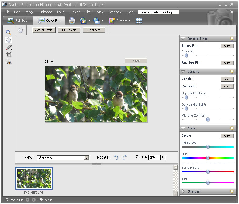 Beginners' Guide to Adobe Photoshop - Pegaweb